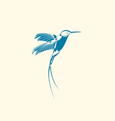 Silhouette of hummingbird vector image