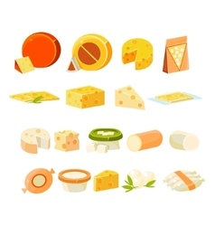 Different cheese icons collection vector