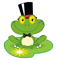 Frog groom on a lilypad vector