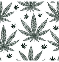 Hemp cannabis leaf seamless pattern vector