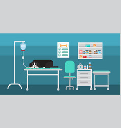 dog in vet clinic of veterinary assistance medical vector image