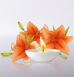 Lily flowers and candle vector