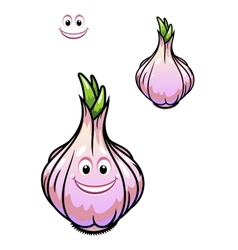 Sprouting fresh garlic bulb vector
