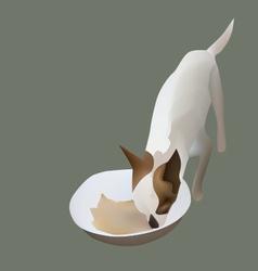 Chihuahua eating vector image