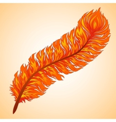 fiery feather vector image vector image