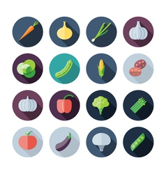 Flat Design Icons For Vegetables vector image vector image
