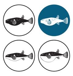 Fugu fish vector