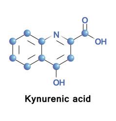 kynurenic acid tryptophan vector image vector image