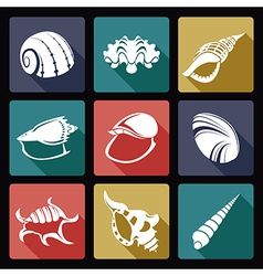 Shell flat icons2 vector