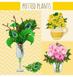 Three floral composition in vases vector image