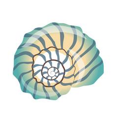 beautiful blue seashell an empty shell of a sea vector image vector image
