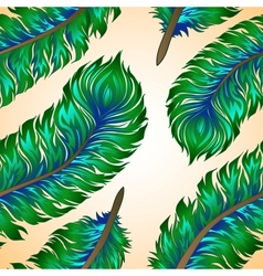 feathers Seamless background vector image vector image