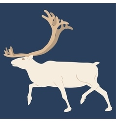 The northern deer blue background vector
