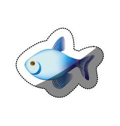 Sticker colorful fish aquatic animal icon vector