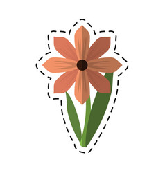 Cartoon gerbera flower spring ornament vector