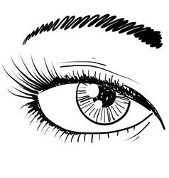 doodle eye iris vector image