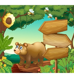 Scene with bear and wooden signs vector image