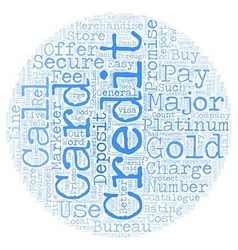 Should you get a gold or platinum credit card text vector