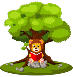 Cartoon lion reading book vector