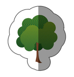 color sticker natural tree icon vector image