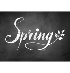Spring word chalked lettering vector