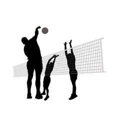 Men playing volleyball vector