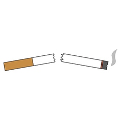 broken cigarette or residues from cigarettes vector image vector image