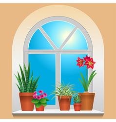 Flowers window plants vector
