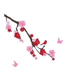 cherry blossom birds vector image