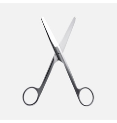 Steel scissors vector