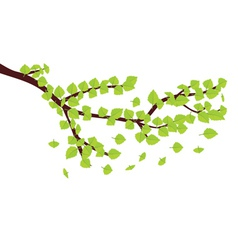 Green leaves on brunch vector