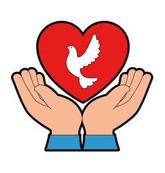 hands human with dove of peace and heart vector image