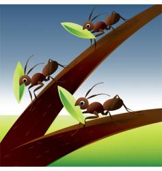 ants on tree vector image
