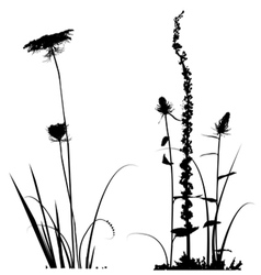 Black and white plants silhouettes vector