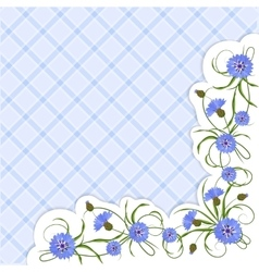 Corner composition with cornflowers and leaves vector
