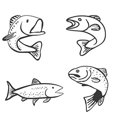 Set of Fish Isolated on White Background vector image vector image