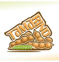 tamarind fruit vector image