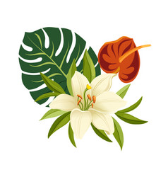 Tropical flowers and leaves elegant floral vector