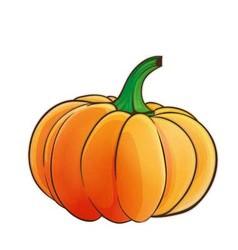 Pumpkin 1 vector