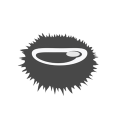 Sea urchin flat design vector