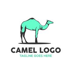 Camel logo-6 vector