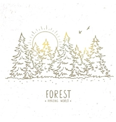 forest trees vector image vector image