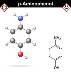 Para aminophenol molecule vector image vector image