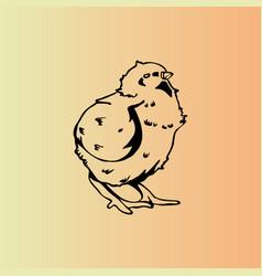 Hand-drawn chicken chick engraving stencil vector