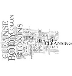Whole body cleanse text word cloud concept vector