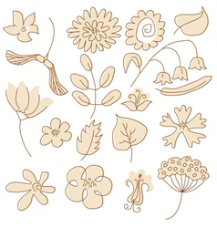 Drawn flowers vector