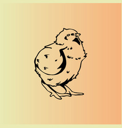 Hand-drawn chicken chick engraving stencil vector