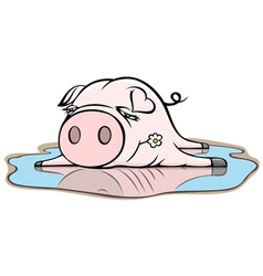 piggy in puddle vector image