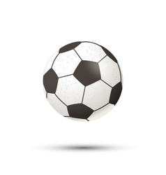 Realistic football ball icon with shadow on white vector image vector image
