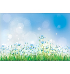 summer flowers blue vector image vector image